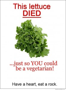 this-lettuce-died
